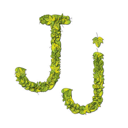 Leafy storybook font depicting a letter J in upper and lower case  Vector