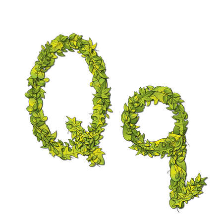 uppercase: Leafy storybook font depicting a letter Q in upper and lower case  Illustration