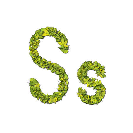 Leafy storybook font depicting a letter S in upper and lower case  Vector