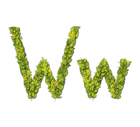 Leafy storybook font depicting a letter W in upper and lower case  Vector