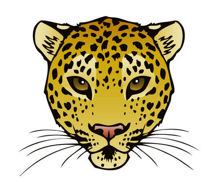 A vector ink illustration of a Leopard s face