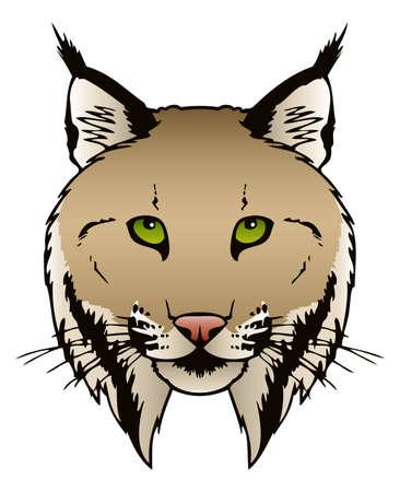 lince: Una ilustración del vector de la tinta de un cabezal de Lynx s Vectores