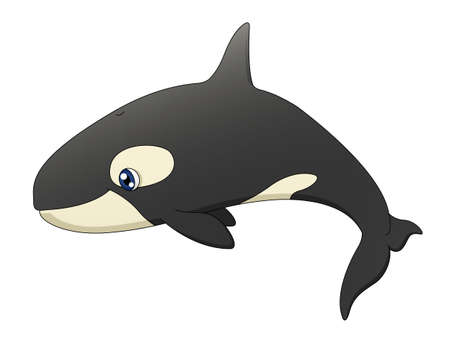 An illustration depicting a cute cartoon killer whale swimming Stock Vector - 18263606