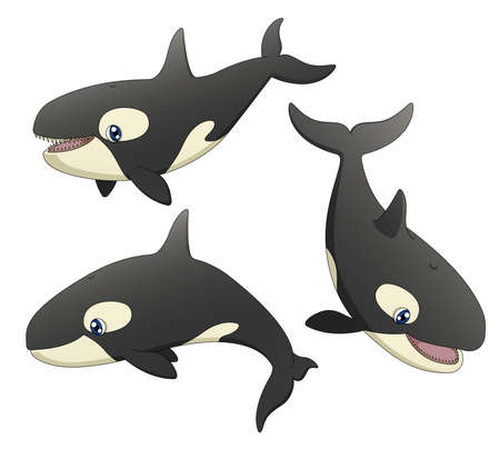 A set of 3 illustrations depicting 3 cute cartoon killer whales in various poses