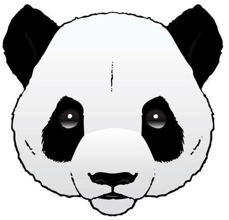 A hand-drawn ink vector of a panda s head Stock Vector - 18263528