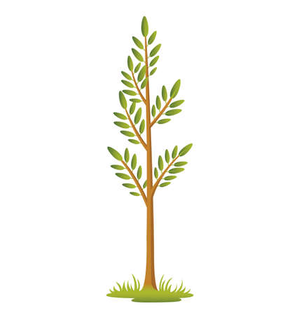 Illustration of a sapling on a patch of grass