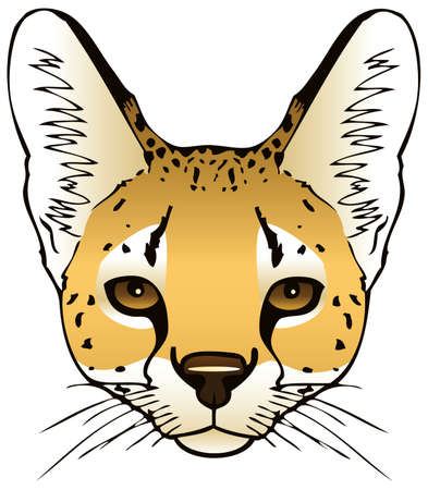 meow: A vector ink illustration of a serval s head