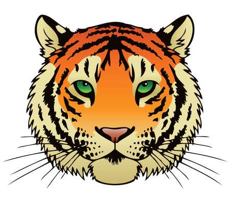 animal nose: Una ilustraci�n tinta vector de la cara de un tigre s