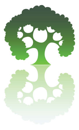A green tree silhouette with reflection  Vector