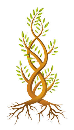 An illustration of two saplings twisted around each other in a helix