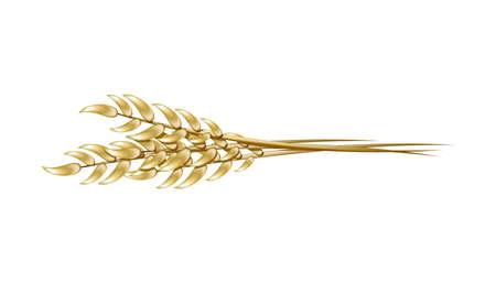 Una ilustración realista del trigo