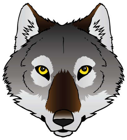 A hand-drawn ink vector of a wolf s face  Illustration