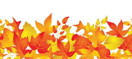 秋の葉のパターンを描いた水平方向に反復可能なボーダー 写真素材 - 18714179