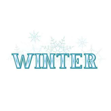 A winter themed banner with various types of blue snowflakes  Vector