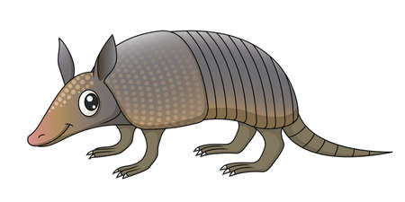 Illustration of a cute cartoon armadillo. Vector