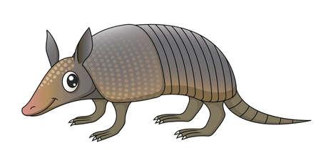 terrestrial mammal: Illustration of a cute cartoon armadillo.