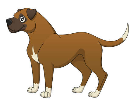 dog nose: An illustration of a cute cartoon boxer standing  Illustration