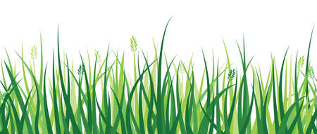 lawn: Een horizontaal herhaalbaar grens beeltenis van een gras patroon. Stock Illustratie