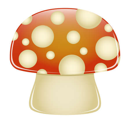 toxicity: Illustration of a glossy red and white spotted mushroom  Illustration