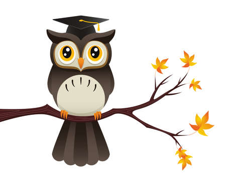 Illustration of an owl perched on a branch wearing a teacher s cap