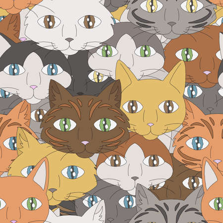 A background depicting the faces of different types of housecats