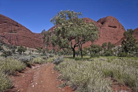ayers: Uluru Ayers Rock Australia