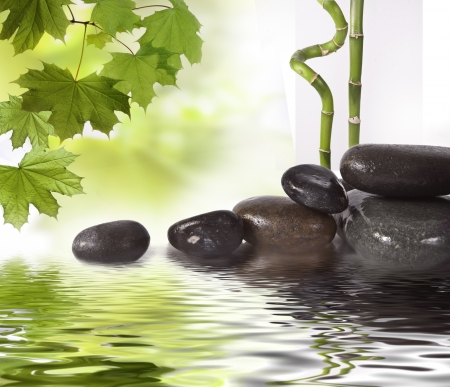 wellness environment: Black stones and green plant with drops Stock Photo