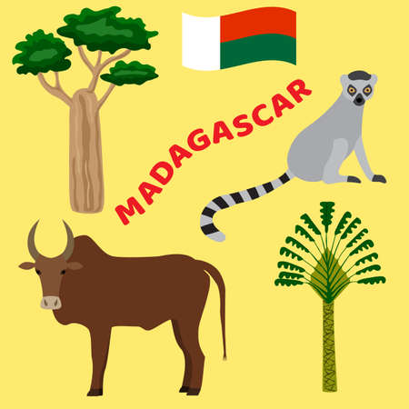 Animals and plants of Madagascar: baobab tree, zebu, ravenala, lemur. Vector illustration. Illustration