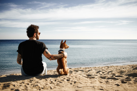 Caucasian man in sunglasses sitting in beach with friend's dog breed Basenji put hand on his back and looking into the distance enjoying deep blue sea. Boy with tattoos in black t-shirt and jeans relaxing under blue sky. Mixed race Asian Caucasian man i
