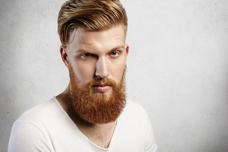 eyebrow raised: Close-up portrait of young Caucasian man with long ginger beard and trendy hairstyle. Young hipster gives an inquiring look with one raised eyebrow. His skin is perfect and expression is reserved.
