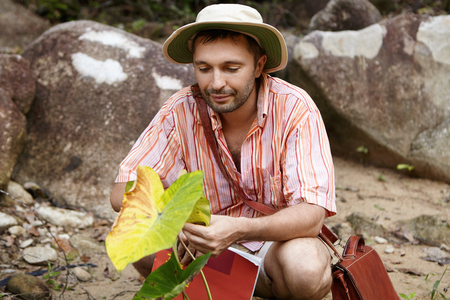 Handsome bearded biologist wearing hat holding leaf of green plant, looking with friendly and caring expression during his environmental studies at work field. Male scientist sitting among rocks