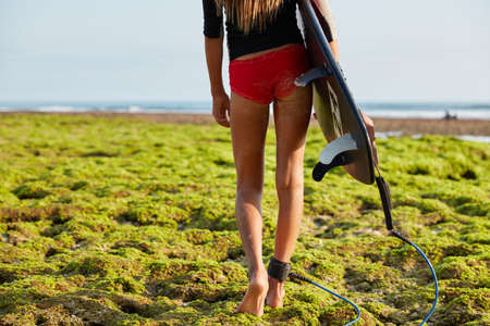 Cropped image of sporty woman with slender legs and sexual buttocks, walks on coastline covered with green vegetation, carries surfboard with legrope, ready for surfing. Life saving concept. Foto de archivo