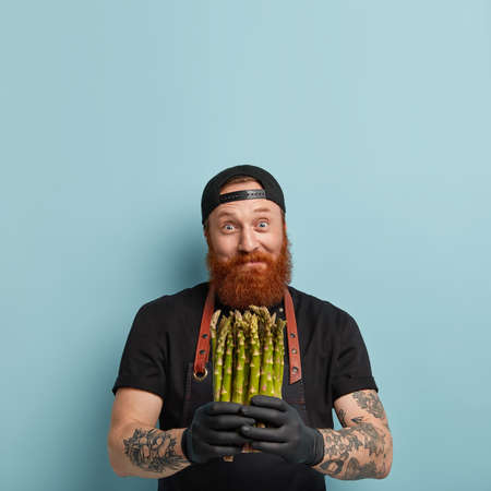 Eating vegetables concept. Delighted joyful bearded man holds bunch of delicacy fresh green asparagus, cooks range of tasty dishes, roasts, wears black cap and t shirt, models over blue wall