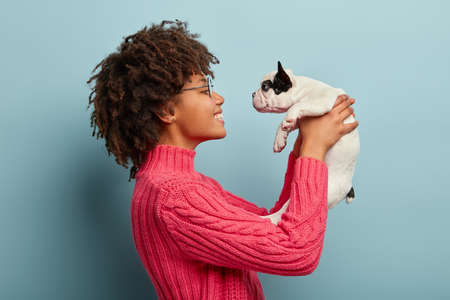 Sideways shot of playful positive Afro female takes care of little pedigree dog who craves attention, wears spectaclse, pink jumper pleased to have pet holds baby animal isolated over blue studio wall
