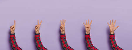 Male hands counting from one to five. Man shows fingers against purple studio background. Hand count. Counting gesture. Collage shot. Body language and nonverbal communication. Set of hands.