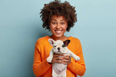 Studio portrait of cheerful black lady holds puppy in both hands, has flat face, suggests to leave it in good hands, wears orange sweater, has toothy smile isolated over blue background feels inspired
