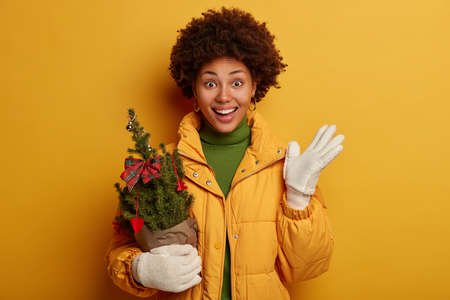 Joyful woman with Afro haircut, dressed in down padded coat, white winter gloves, holds potted decorated small New Year tree, prepares for holiday celebration, isolated over yellow background