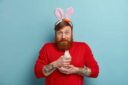 Shocked male with rabbits ears holds small bunny, prepares for Easter holiday, looks surprisingly at camera, isolated on blue background. Redhead man with animal. Tradition, symbol celebration