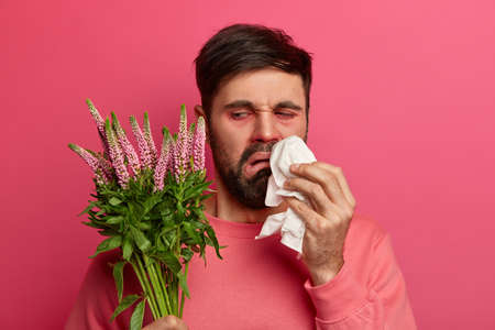 Upset displeased bearded man looks at plant which causes allergic reaction, rubs and blows nose with handkerchief, poses against pink background. Seasonal allergy, symptoms and sickness concept Stok Fotoğraf