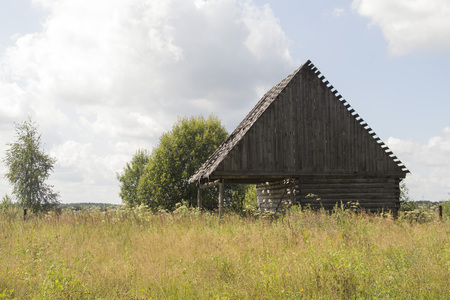 ld wooden abandoned house standing on a field surrounded by trees
