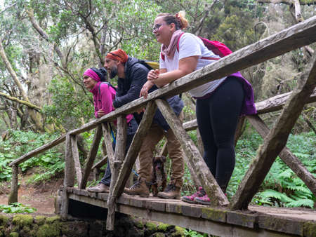Three people on top of a bridge observe nature. They are hiking in a Laurisilva forest. Specifically in La Llania, on the island of El Hierro.
