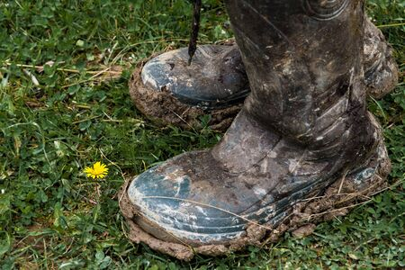 antithesis: Rubber boots covered with mud in front of a single yellow flower Stock Photo