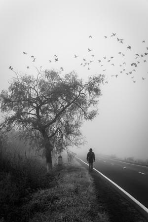 Man passeren onder een boom in de mist, vogels wegvliegen. Soft focus en motion blur onderstrepen het concept van overlijden. Stockfoto