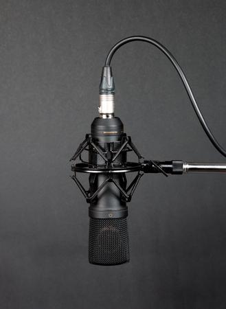 cardioid: Micrófono de condensador negro sobre fondo gris