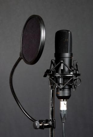cardioid: Micrófono de condensador negro con filtro pop sobre fondo gris