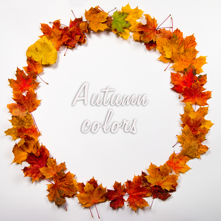 circle design: Round frame made out of autumn leaves. Space for text in the middle.