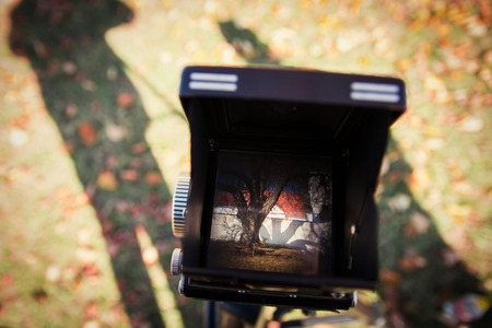 viewfinder vintage: Viewfinder of a vintage camera showing a church and an old tree