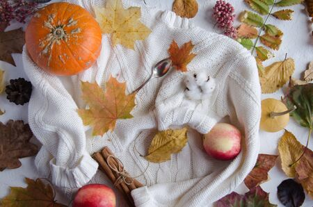 Autumn composition on a white background. Pumpkins, tree leaves, apples, cinnamon, coffee, knitted sweater, gingerbread cookies