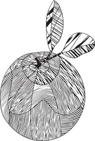 Stylized striped orange Illustration