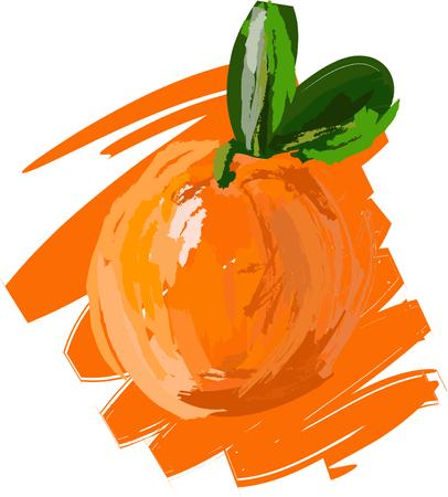 Art. Vector illustration of orange